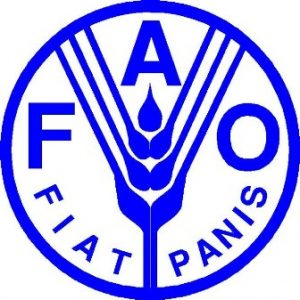 FAO issues hunger alert in East Africa over failed rains